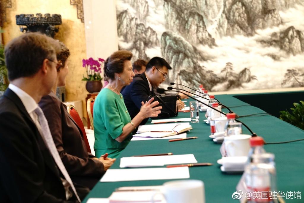 姜老师担任英国安妮公主首访湖北武汉翻译现场.jpg
